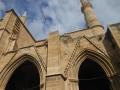 Moscheea Selimiye4