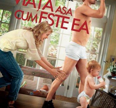 The Lifeguard (2013) Film Online Subtitrat