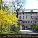Muzee si expozitii in Bucuresti (I)