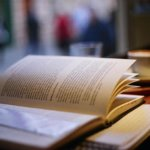 Prin blogosfera literara (6 – 12 mai 2013)