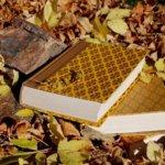 Prin blogosfera literara (1 – 7 septembrie 2014)