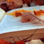 Prin blogosfera literara (21 – 27 octombrie 2013)
