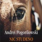 Nic Studeno. Al doilea cartuș, de Andrei Pogorilowski
