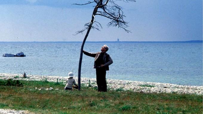 foto 4 tarkovski