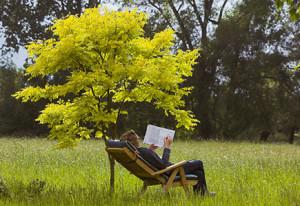 435-reading-under-tree