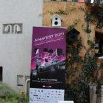 Oițele vor vopsi Bucureștiul în roz