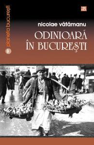 Odinioara in Bucuresti