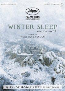 poster winter sleep A3