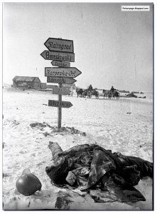 Dead-German-soldier-Stalingrad-1943