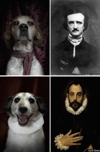 poetic-dogs