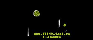 logo-filit-2015