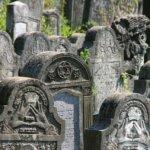 Şi lespezile vorbesc. Cimitirele Evreieşti din Bucovina