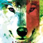 Ochi de lup, de Daniel Pennac