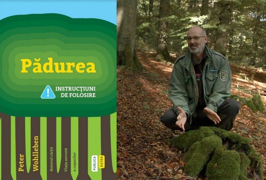 pădurea cum să slăbească)